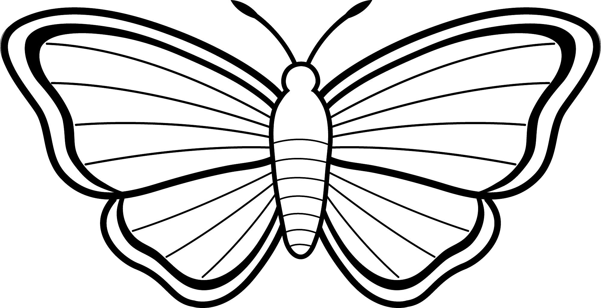 Free Coloring Pages Of Outline A Butterfly