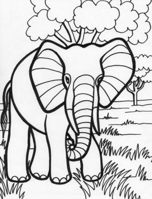 elefante para pintar