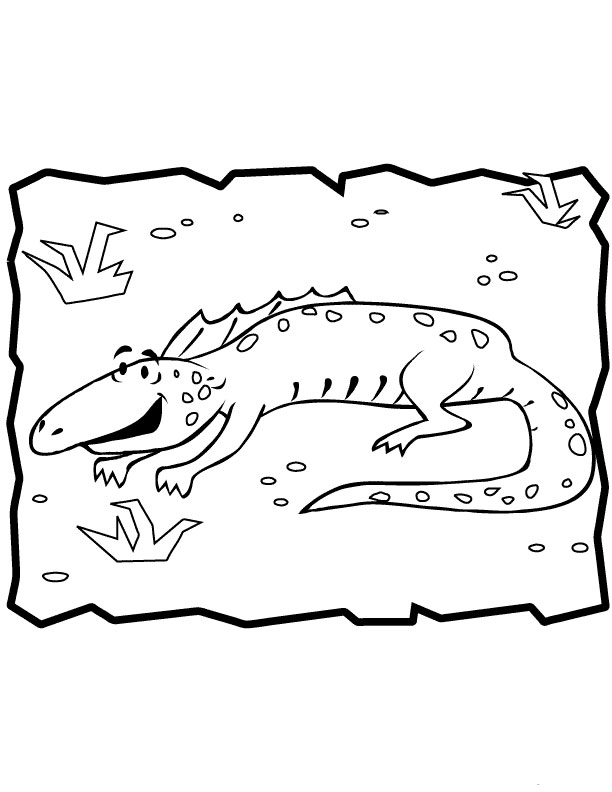 Free Coloring Pages Of Iguana To Draw