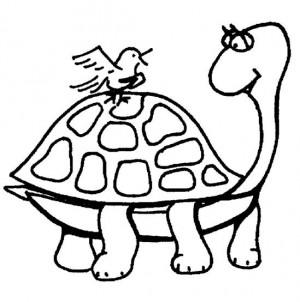 dibujo de una tortuga para colorear