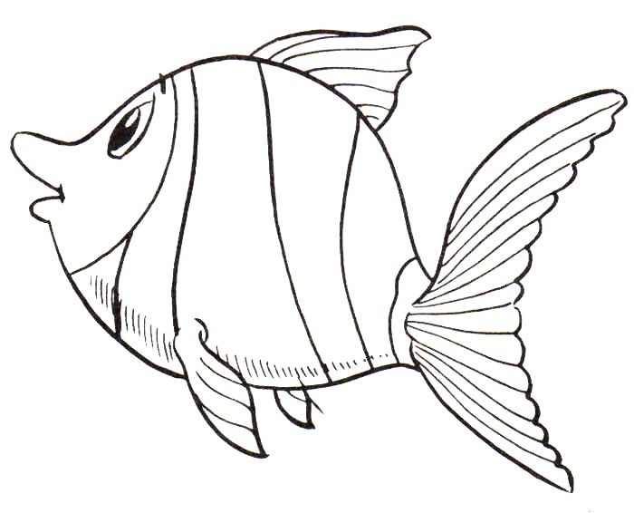 Dibujos De Animales Del Mar: Peces Para Colorear, Pintar E Imprimir