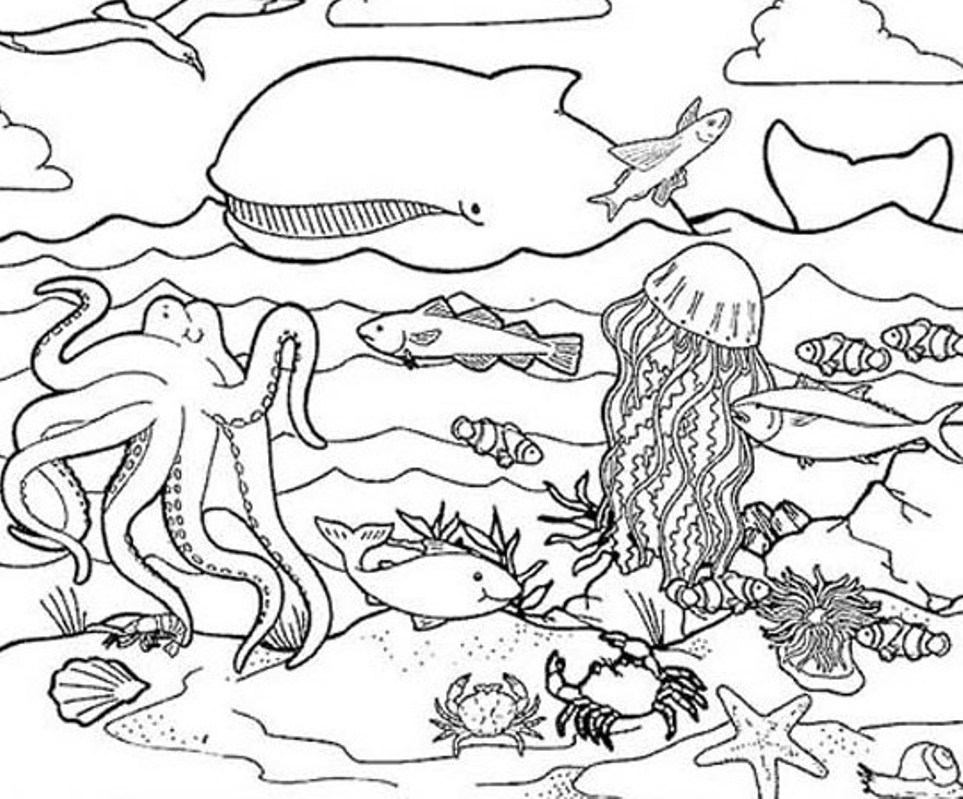 Free Coloring Pages Underwater Animals : Dibujos de arrecifes imagui