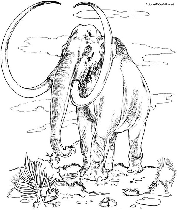 Wooly mammoth coloring page coloring pages for Wooly mammoth coloring page